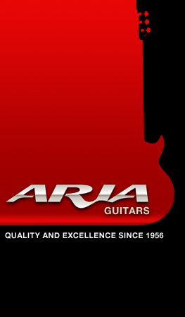 Enter Aria Guitars