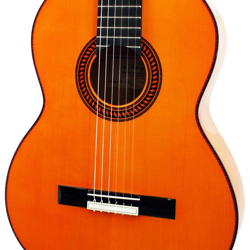1f Items(製品情報) Aria Guitars