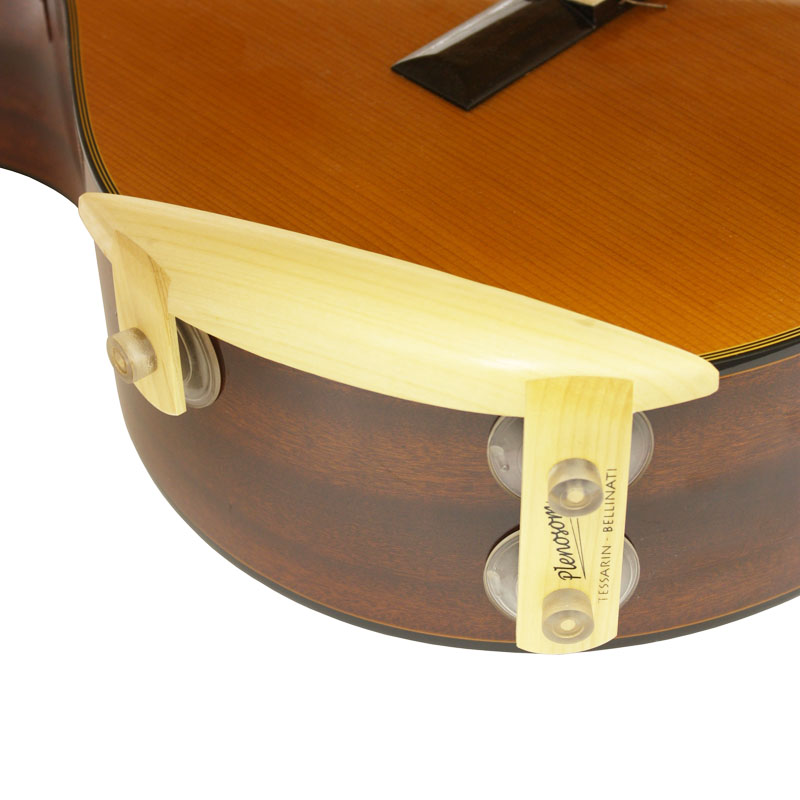 ARIA GUITARS - ARAI & CO., INC