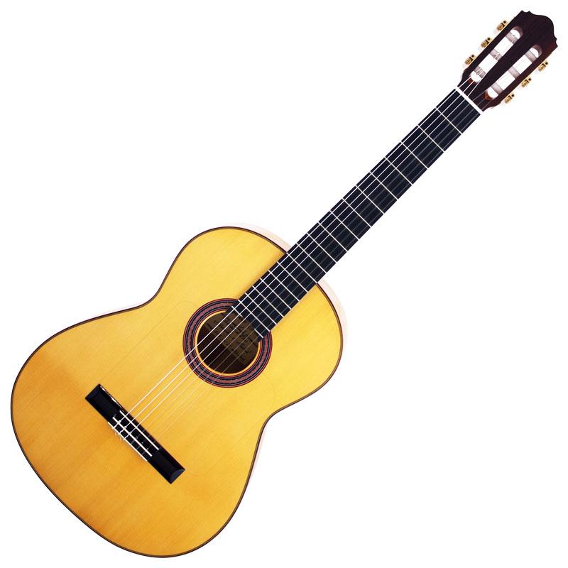 ef5 items 製品情報 aria guitars